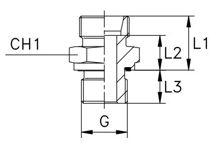 terminale-din-diritto-con-guarnizione-piana-filetto-gas-cilindrico-solo-corpo