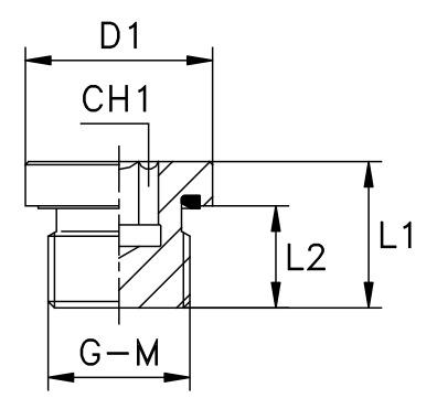 tappo-esagono-incassato-con-guarnizione-piana-filetto-gas-cilindrico