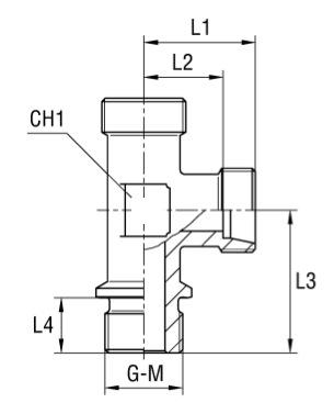 terminale-din-a-t-di-estremita-laterale-filetto-gas-cilindrico-solo-corpo-dis