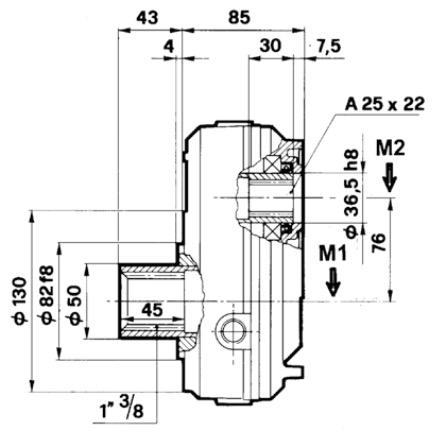 moltiplicatori-per-pompe-gr-2-dis2